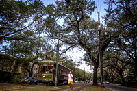 IMG_5960ent_streetcartrees